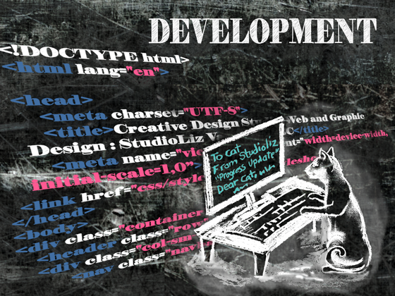 infographic-web design4 development